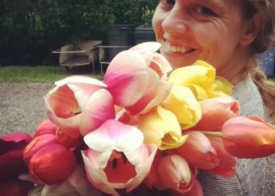 GD Jess tulips